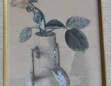 Single Rose 1901